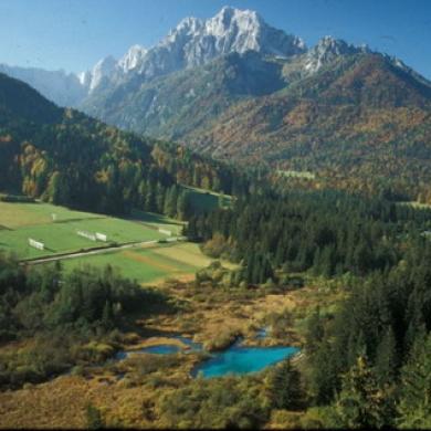 izeti v okolici, Kranjska Gora, Slovenija